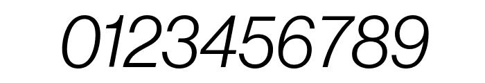 NeueHaasGrotDisp 46LightItalic Reduced Font OTHER CHARS