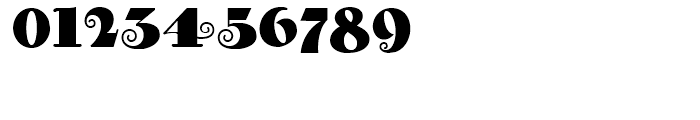 Curly Shuffle NF Regular Font OTHER CHARS
