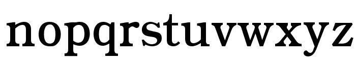 CyrCauc   Medium Font LOWERCASE