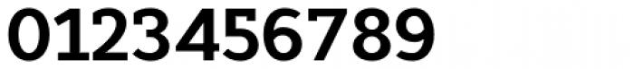 Cyntho Slab Pro Bold Font OTHER CHARS