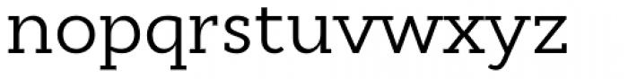 Cyntho Slab Pro Regular Font LOWERCASE