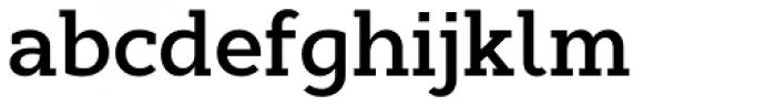 Cyntho Slab Pro SemiBold Font LOWERCASE