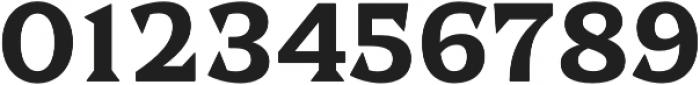Dallas PS Serif Reg otf (400) Font OTHER CHARS
