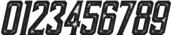 Darmond Rough Oblique otf (400) Font OTHER CHARS