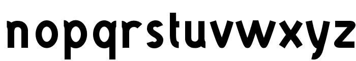 DANOISE-Bold Font LOWERCASE