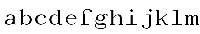 Dactylographe [Unregistered] Font LOWERCASE