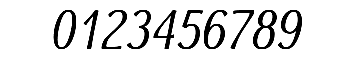 Dai Banna SIL Book Italic Font OTHER CHARS