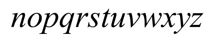 Dai Banna SIL Book Italic Font LOWERCASE