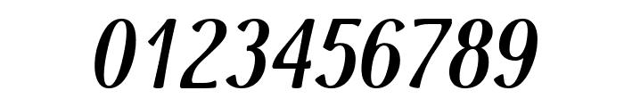 Dai Banna SIL Light Bold Italic Font OTHER CHARS