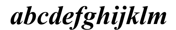 Dai Banna SIL Light Bold Italic Font LOWERCASE