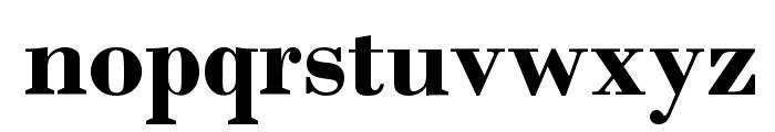DallaTerrazza-Bold Font LOWERCASE