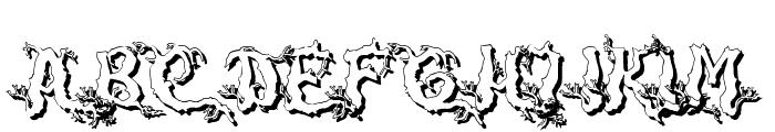 DarkwoodShad2 Font UPPERCASE
