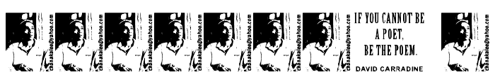 David Carradine Font OTHER CHARS