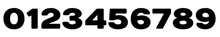 DaysSansBlack Font OTHER CHARS