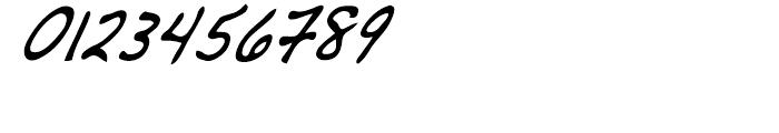 Dakota Demi Condensed Italic Font OTHER CHARS