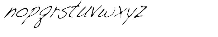 Dakota Light Condensed Italic Font LOWERCASE
