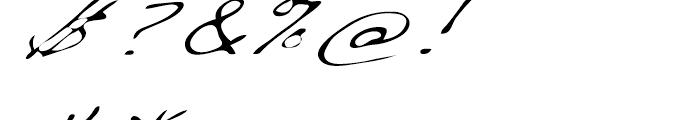 Dakota Light Extended Italic Font OTHER CHARS