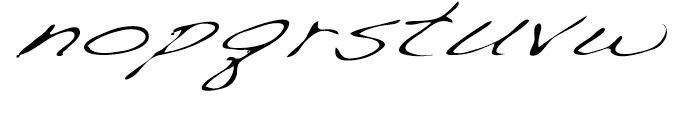 Dakota Light Extended Italic Font LOWERCASE