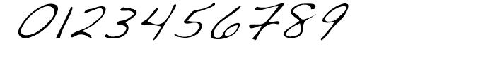 Dakota Light Italic Font OTHER CHARS