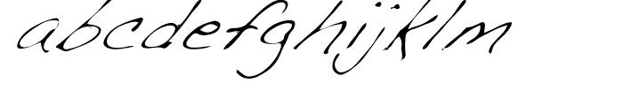 Dakota Light Italic Font LOWERCASE
