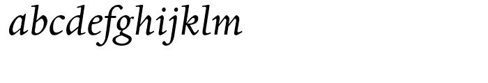 Dante Italic Font LOWERCASE