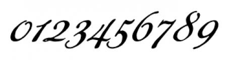Daisy Lau Regular Font OTHER CHARS