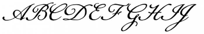 Daisy Lau Font UPPERCASE