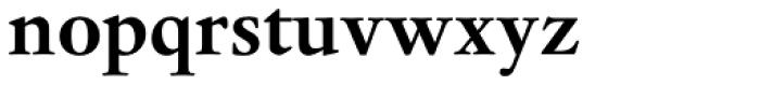 Dante Pro Bold Font LOWERCASE