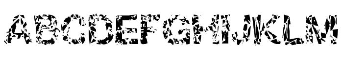 DBE-Oxygen Font UPPERCASE