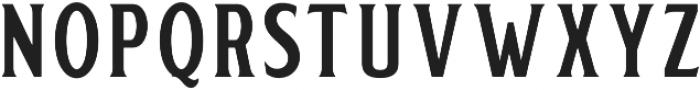 Delighter Script Serif Tracked otf (300) Font UPPERCASE