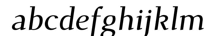 Dehuti Alt Bold Italic Font LOWERCASE