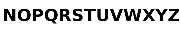 DejaVu Sans Bold Font UPPERCASE