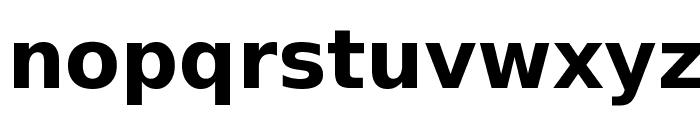 DejaVu Sans Bold Font LOWERCASE