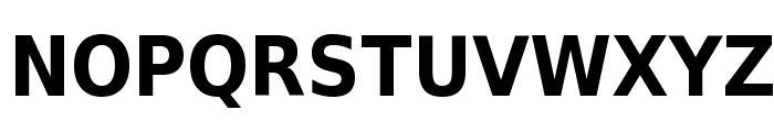 DejaVu Sans Condensed Bold Font UPPERCASE