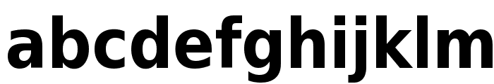 DejaVu Sans Condensed Bold Font LOWERCASE
