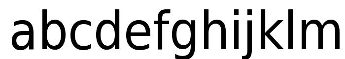 DejaVu Sans Condensed Font LOWERCASE