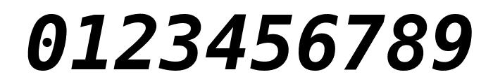DejaVu Sans Mono Bold Oblique Font OTHER CHARS