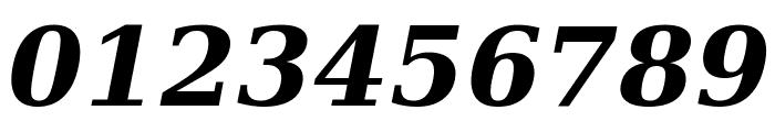 DejaVu Serif Bold Italic Font OTHER CHARS