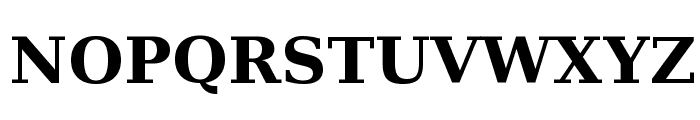 DejaVu Serif Bold Font UPPERCASE