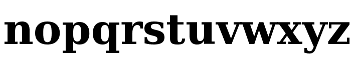 DejaVu Serif Bold Font LOWERCASE