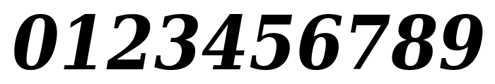 DejaVu Serif Condensed Bold Italic Font OTHER CHARS