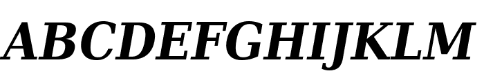 DejaVu Serif Condensed Bold Italic Font UPPERCASE