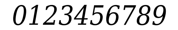 DejaVu Serif Condensed Italic Font OTHER CHARS