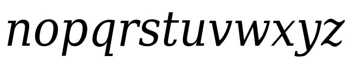 DejaVu Serif Condensed Italic Font LOWERCASE