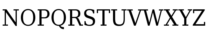 DejaVu Serif Condensed Font UPPERCASE