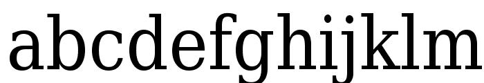 DejaVu Serif Condensed Font LOWERCASE