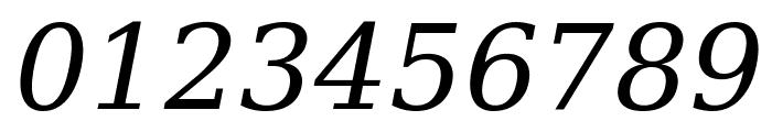 DejaVu Serif Italic Font OTHER CHARS