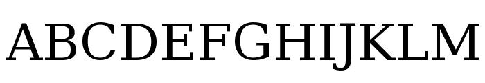 DejaVu Serif Font UPPERCASE
