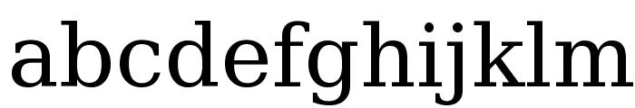 DejaVu Serif Font LOWERCASE