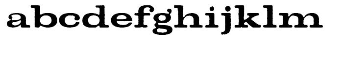 Denim Bold Font LOWERCASE